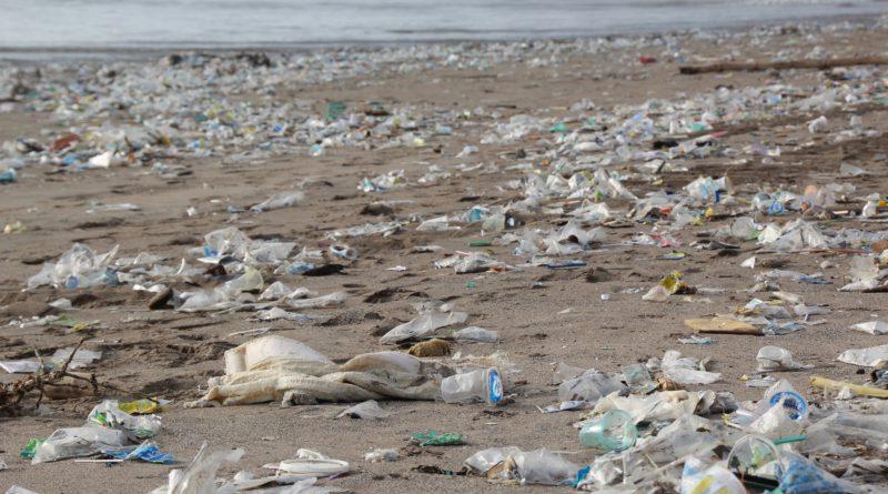 13 productos Eco que te ayudarán a reducir el plástico en tu día a día