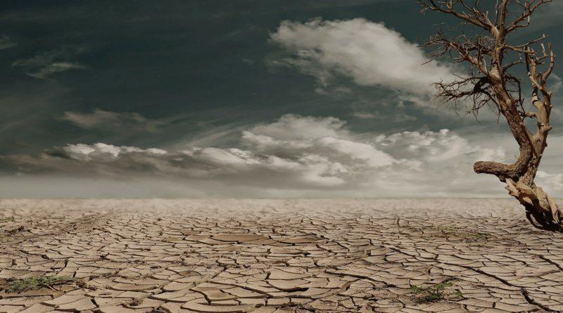 10 propuestas que te ayudarán a combatir el cambio climático